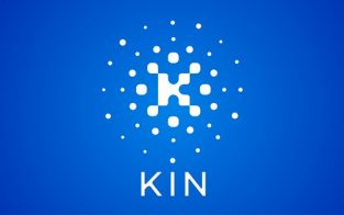 Kin price predictions